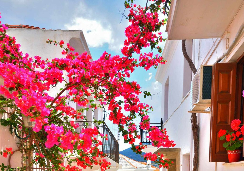 Buy your dream property in Skopelos