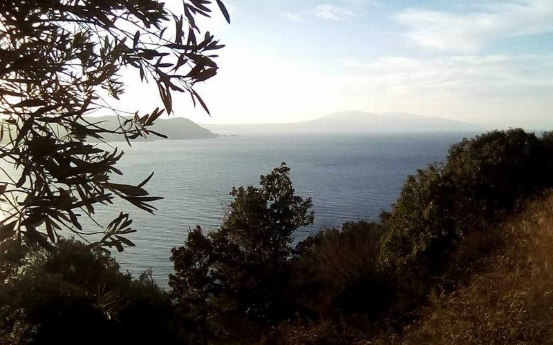 Buildable plot with dramatic views to the Sea in Glossa area Sunset from the plot