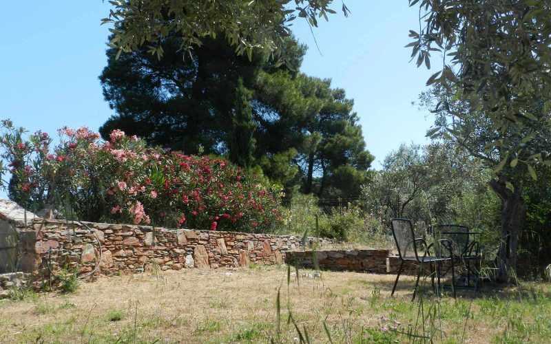 Architect designed Villa in the countryside of Skopelos Island Gardens