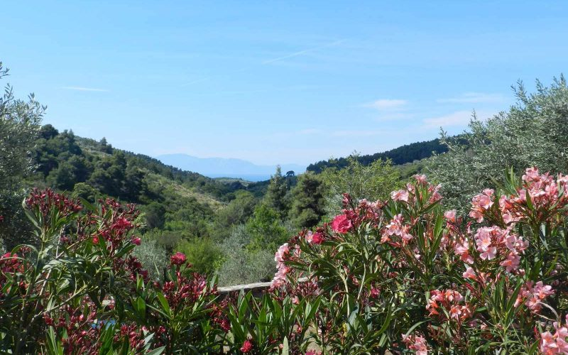 Architect designed Villa in the countryside of Skopelos Island Views