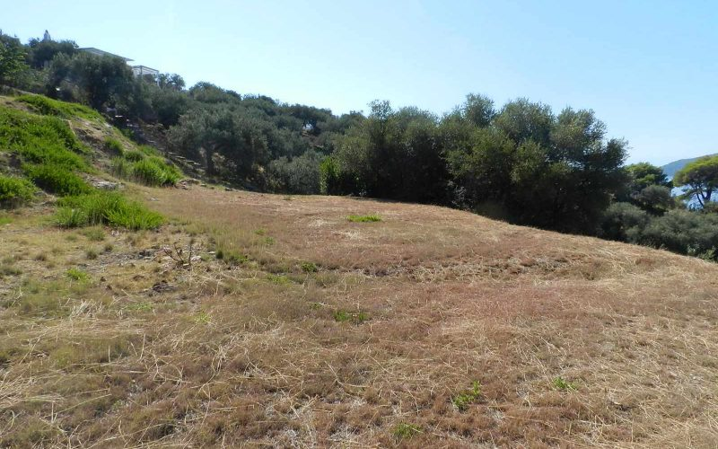 Unique plot with access to private beach Ground condition