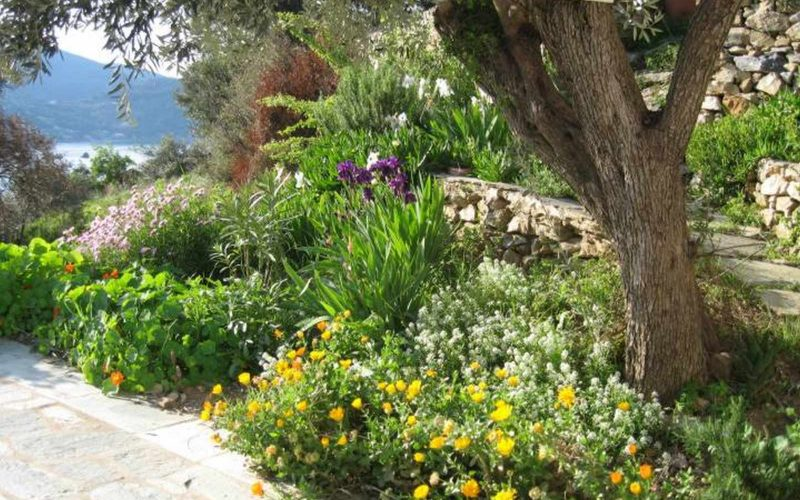Villa with swimming pool and Views to Skopelos Town and port
