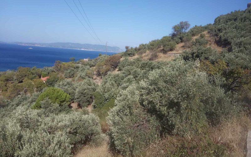 Plot with building permit close to Armenopetra beach
