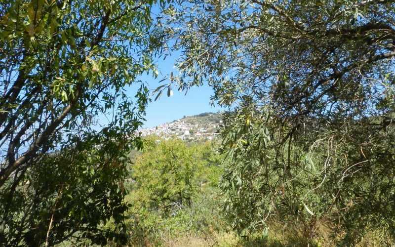 Plot near Glossa rea with views to the Sea Glossa views