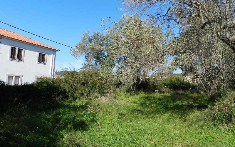 Land close to Skopelos waterfront with buildng permit Land 2