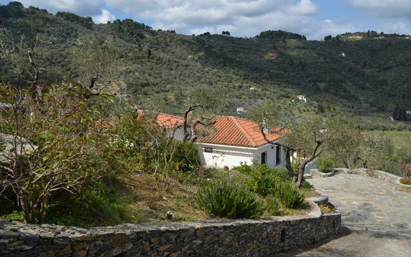 Villa with guest house close to Skopelos Town Views