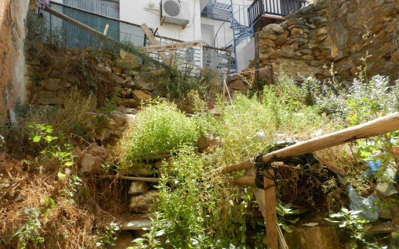 Two Town Houses both with yards inside Skopelos Town The yard of the ruin