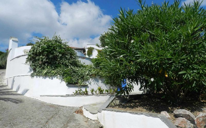 Villa with swimming pool and stunning views to the Sporades Islands Exterior