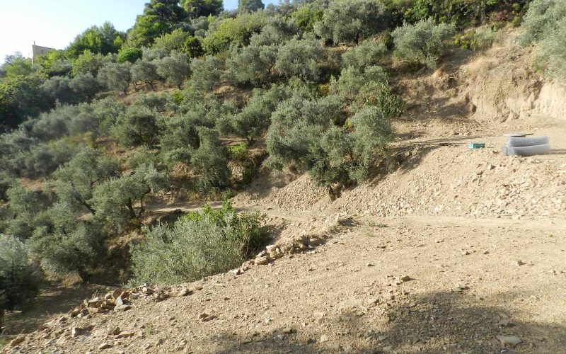Land property above Skopelos Town with breathtaking views Plot