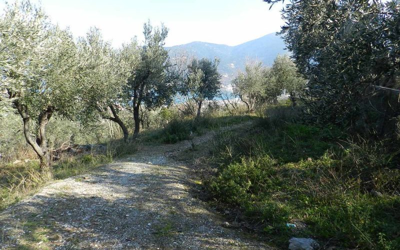 Beautiful Land above Skopelos Town with views and building permit Road