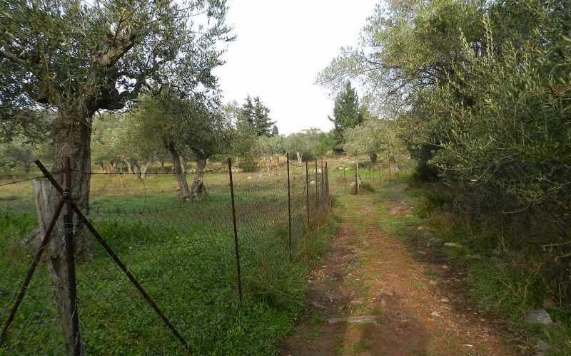 Spacious plot in the area of Alikias Access