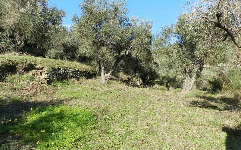 Unique plot in Agios Konstantinos with spactacular views Ground
