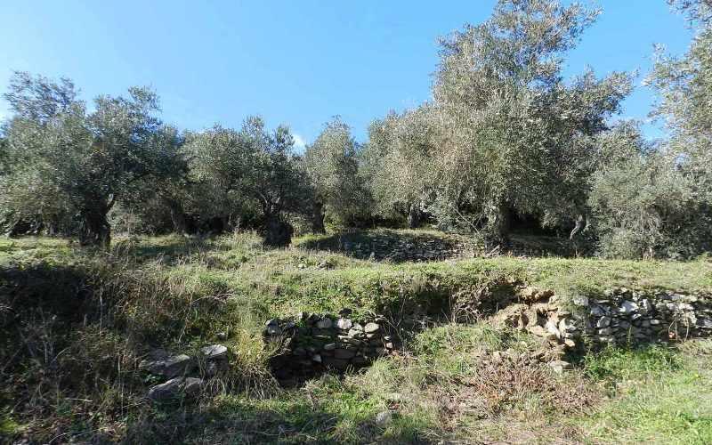 Unique plot in Agios Konstantinos with spactacular views Terraces