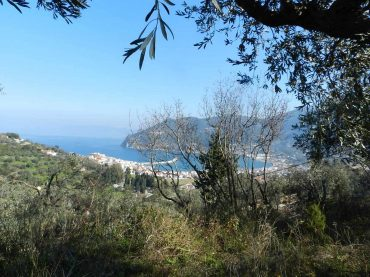 Beautiful Land above Skopelos Town with views and building permit